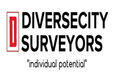 DiverseCity Surveyors